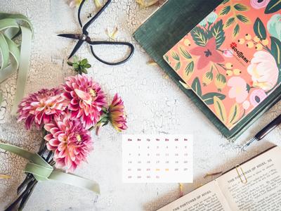 Скачать красивые обои для рабочего стола, картинка-календарь на 2016 год. Обои для рабочего стола: календарь на Август 2017