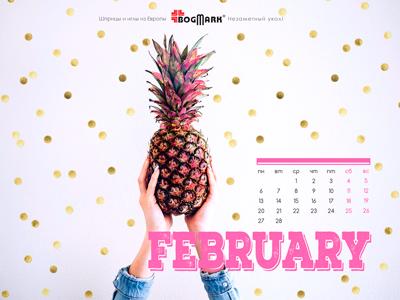 Скачать красивые обои для рабочего стола, картинка-календарь на 2016 год . Обои для рабочего стола: календарь на Февраль 2017