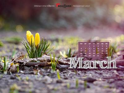 Скачать красивые обои для рабочего стола, картинка-календарь на 2016 год . Обои для рабочего стола: календарь на Март 2017