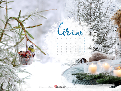 Скачать красивые обои для рабочего стола, картинка-календарь на 2016 год. Обои для рабочего стола: календарь на Январь 2017