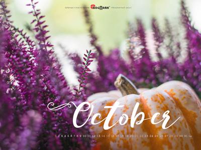 Скачать красивые обои для рабочего стола, картинка-календарь на 2016 год. Обои для рабочего стола: календарь на Октябрь 2017